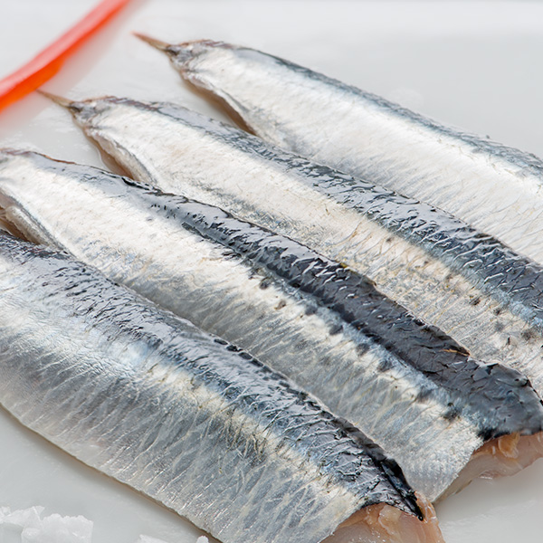 Lomos de sardinas crudas